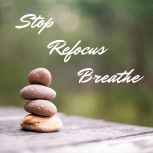 Kevin Guest - Stop, Refocus, Breathe - The Reality Slap